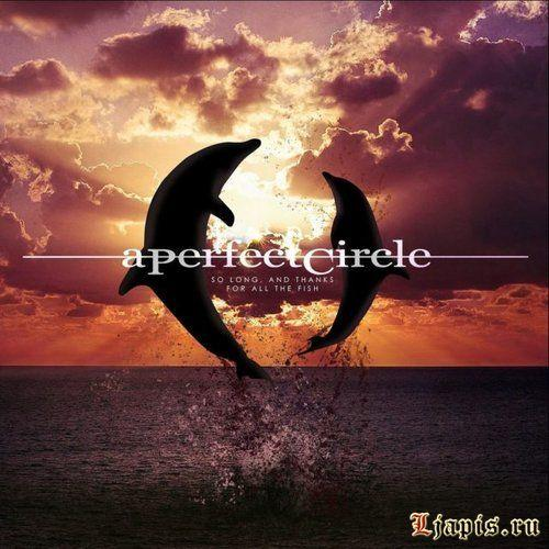 "A Perfect Circle выпустили трек ""So Long, and Thanks for All the Fish"""